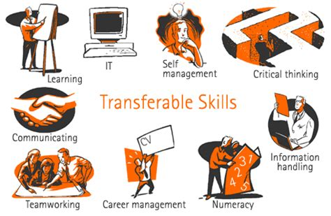 Examples of Transferable and Applicable Skills in Cover